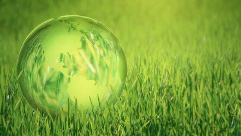 Hacia una inversion medioambiental sostenible