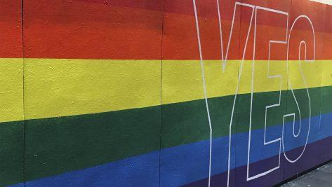 En pie por la inclusion